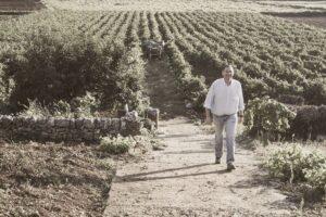 Cantine Miali, una tradizione di famiglia nel cuore della Valle D'Itria