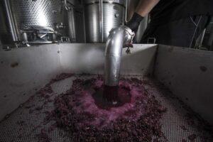 Marulli, il rosato che profuma di Salento